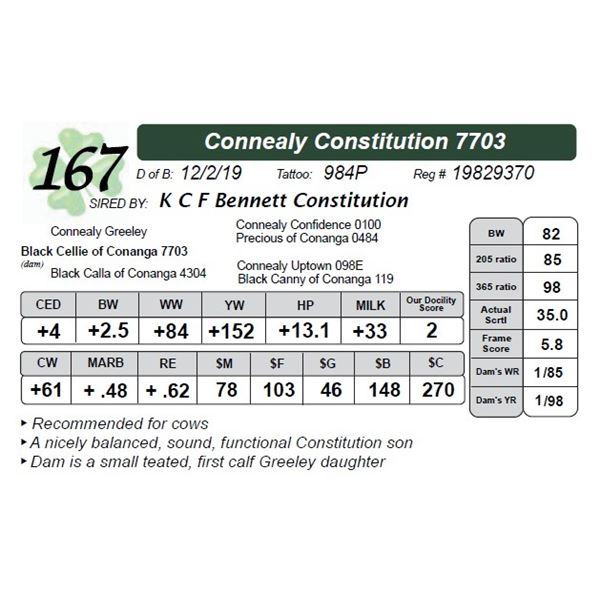 Connealy Constitution 7703