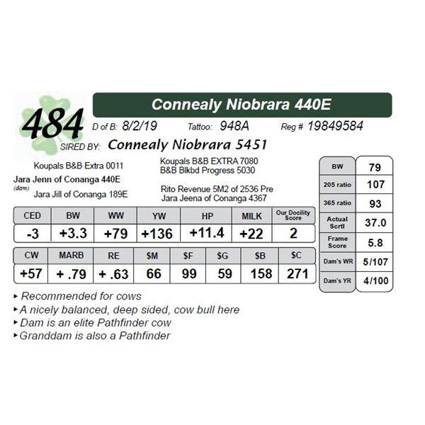 Connealy Niobrara 440E