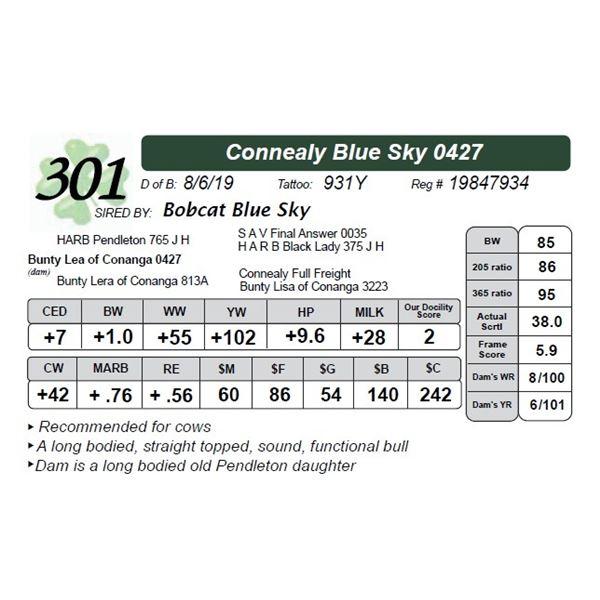 Connealy Blue Sky 0427