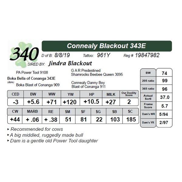 Connealy Blackout 343E