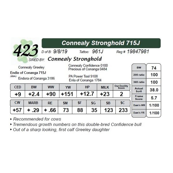 Connealy Stronghold 715J
