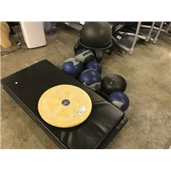 LOT OF 5 GYM MATS, BALANCE BOARD AND MORE