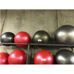 4 YOGA BALLS