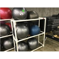 6 YOGA BALLS AND ONE 2 COMPARTMENT BALL RACK