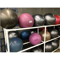 6 YOGA BALLS AND ONE 4 COMPARTMENT BALL RACK
