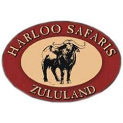 Harloo Safaris South Africa Plains Game Safari