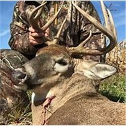 Missouri Whitetail Hunt for Two (2) Hunters, Six (6) Days, Five (5) Nights