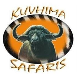 African Safari in Limpopo Province of South Africa