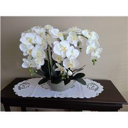 Silk Orchid