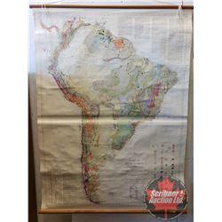 "Vintage Scroll Map c.1950 South America (47""W x 64""L)"