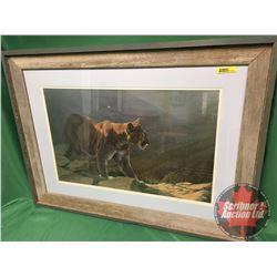 """Shelley Barkman Framed Print """"Cougar"""" (23""""H x 31""""W)"""
