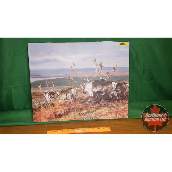 "Vintage: Canvas Print ""Caribou""  (16""H x 20""W)"