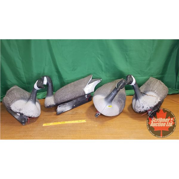 "Flambeau Geese Decoys (4) (24""L)"
