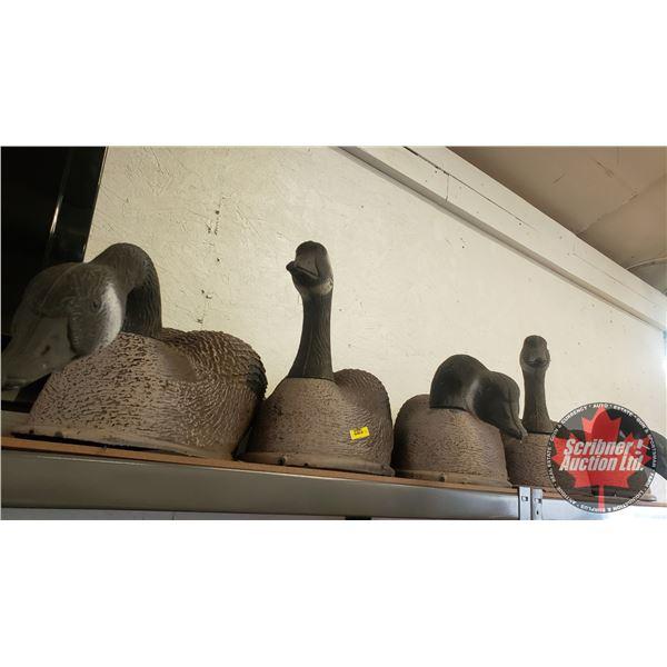 Goose Plastic Decoys (5)