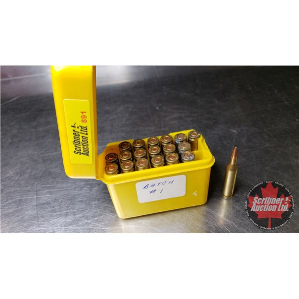 AMMO: 17 Rem in Case Guard Ammo Carrier (19 Rnds)