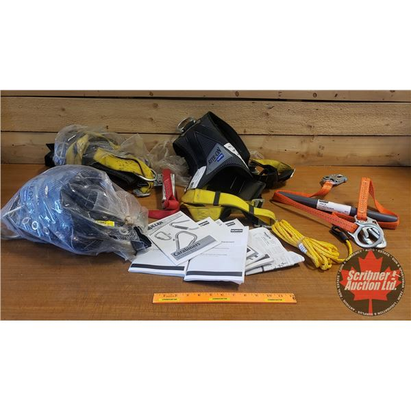 Safety Harnesses (3) & Lanyards (2)