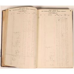 Con Virginia Assay Book, 1878  [131076]