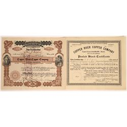 Copper River Copper Company Stocks, Alaska, 2 different Varieties  [129490]