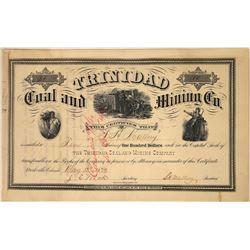 Trinidad Coal and Mining Company Stock, Starkville, Colorado, 1879  [128881]