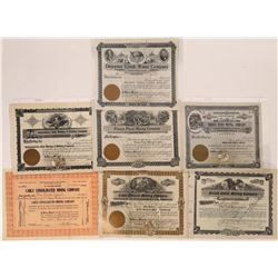 Deer Lodge Mining Stock Collection  [123973]