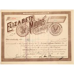 Elizabeth Mining Co. Stock Certificate w/ Morgan Dollar Vignettes  [129613]