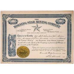 Morning Star Mining Company, M. T., 1889  [123884]