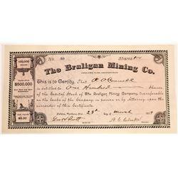 Braligan Mining Company Stock Certificate  [129576]