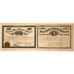 Two Different Montana Mining Stocks: Silver Bill and Bell Silver  [113863]