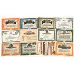 Petroleum Stock Certificates Incorporated in Delaware (24)  [127728]