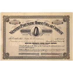 Stock Cert. Issued to Buffalo Bill Business Partner  [127419]