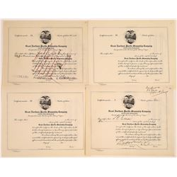 Great Northern Pacific Steamship Company Stocks, Two Issued (4)  [128614]
