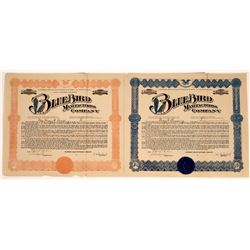 Blue Bird Manufacturing Company Stock Certificates (2)  [127745]