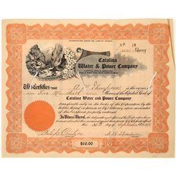 Arizona Water & Power co. Stock Certificate  [127466]