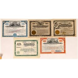 Electric Light Company Stock Certificates  [127462]