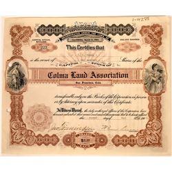 Colma Land Association Stock Certificate  [113916]