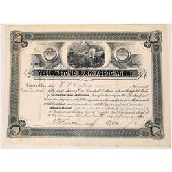 Yellowstone Park Association Stock, 1890  [130004]