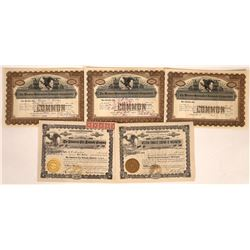 Early Western Townsite Company Stock Certificates  [113919]