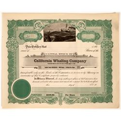 California Whaling Company Unissued Stock Certificate (1)  [127740]