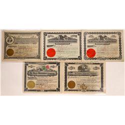 Havre, Montana Non-Mining Stock Certificate Group   [127584]