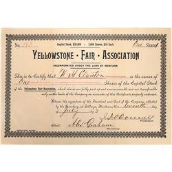 Yellowstone Fair Association Stock, 1893, Montana  [123950]