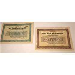 Coney Island Hotel Corporation Stock Certificates  [113906]