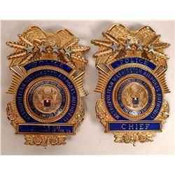 Metro Airport Auth 2001 Inauguration Badges  [131047]