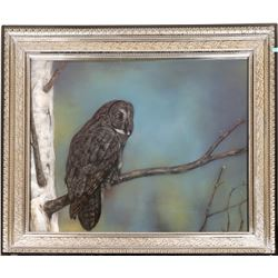 Owl in the Wild, Pastel, by Jennifer O'Cualain  [131259]
