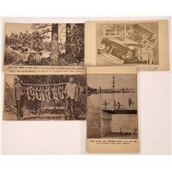 Llano del Rio Commune, California Postcards - 4  [129026]