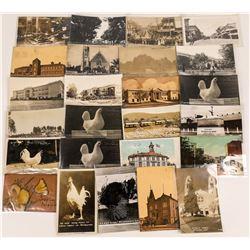 Petaluma, California Postcards ~   [129050]