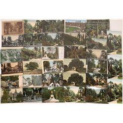 San Jose, California, Vintage Postcards of Parks ~ 31 color; 4 B&W  [129390]