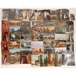 Roaring Camp & Mystery Spot Postcards (27)  [128922]