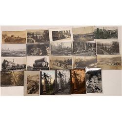 Tuolumne County Lumber Cutting Postcards  [122404]