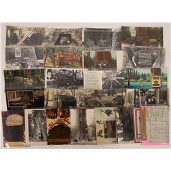 Redwood Tourist Spots Photocards  [122395]