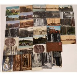 Great Collection of Eureka Redwood Post Cards  [122397]